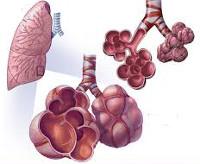 Дефицит альфа1-антитрипсина