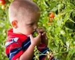 Отравление ядовитыми растениямим