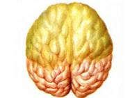 Пневмококковый менингит