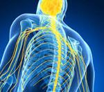 Радиационные поражения нервной системы